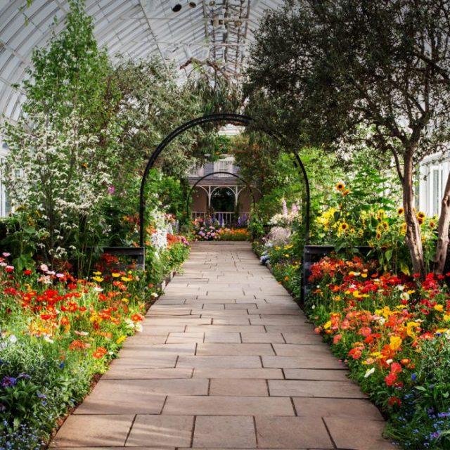Online μαθήματα κηπουρικής και τέχνης προσφέρει ο Βοτανικός Κήπος της Νέας Υόρκης